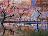 USA, Utah, Glen Canyon Nra. Drought Reveals Dead Trees Photographic Print by Jaynes Gallery