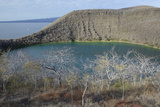 Ecuador, Galapagos, Isabela Island. Tagus Cove. Darwin Lake in Fall Photographic Print by Kevin Oke
