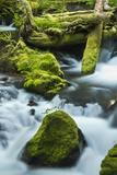 Panther Creek, Gifford-Pinchot Nf, Carson, Washington, Usa Photographic Print by Michel Hersen
