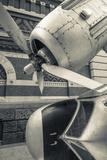 USA, Pennsylvania, Philadelphia, Grumman Greenhouse Sculpture Photographic Print by Walter Bibikow