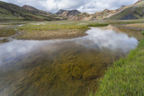 Stream Running Through a Meadow in Landmannalaugar, Iceland Photographic Print by Gavriel Jecan
