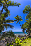 Tropical Coastline of Princeville, Hi Photographic Print by Andrew Shoemaker