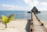 Placencia, Belize. Roberts Grove Resort. Bar on Roof Covered Pier Photographic Print by Trish Drury