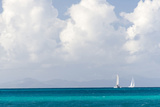 Bvi, Sailboats Navigate Caribbean Sea Photographic Print by Trish Drury