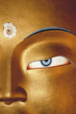 Close-Up of Statue, Thiksay Gompa Photographic Print by John and Lisa Merrill