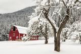 Fresh Snow on Red Barn Near Salmo, British Columbia, Canada Papier Photo par Chuck Haney