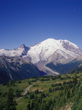 Mt. Rainier Viewed from Sourdough Ridge, Mt. Rainier NP, Wa Photographic Print by Greg Probst