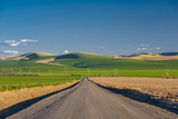 USA, Washington, Walla Walla. Road to Blue Mountains in Wine Country Photographic Print by Richard Duval