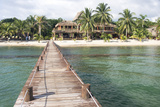 Placencia, Belize. Roberts Grove Resort. Sandy Beach Photographic Print by Trish Drury