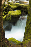 Panther Creek, Gifford-Pinchot National Forest, Washington, Usa Photographic Print by Michel Hersen