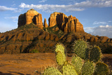Cathedral Rock at Sunset, Prickly Pear Cactus, Sedona, Arizona, Usa Photographic Print by Michel Hersen