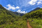 Hiking Trail to Hanakapiíai Falls in Kauai Along the Na Pali Coast Photographic Print by Andrew Shoemaker