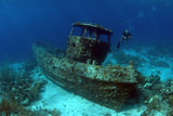 Saba Tugboat, Artificial Reef Site, Curacao, Netherlands Antilles Photographic Print by Barry Brown