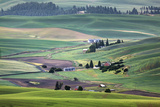 USA, Washington. Landscape of Palouse Country and Farms Photographic Print by Jaynes Gallery
