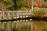 Bridge, Crystal Springs Lake, Rhododendron Garden, Portland, Oregon Photographic Print by Michel Hersen
