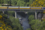 Taieri Gorge Train Crossing Taieri River, South Island, New Zealand Photographic Print by David Wall
