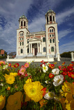 Sacred Heart Basilica and Flowers, South Canterbury, New Zealand Photographic Print by David Wall