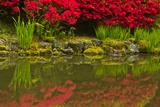 Portland Japanese Garden in Spring, Portland, Oregon, Usa Photographic Print by Michel Hersen
