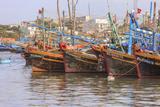 Fishing Fleet. Phan Thiet Harbor. Bhin Thuan Province. Vietnam Photographic Print by Tom Norring