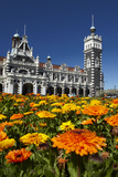 Spring Flowers and Railway Station, Dunedin, South Island, New Zealand Photographic Print by David Wall