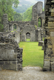 Wales, Valle Crucis Abbey, Near Llangollen. Denbighshire Photographic Print by Charles Cecil