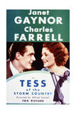 Tess of the Storm Country - Movie Poster Reproduction Art