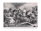 Trooper Fortune Cutting Loose the Living Oxen under Heavy Fire Giclee Print by H. Dixon