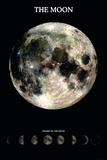 The Moon With Phases Posters