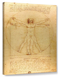 Leonardo Da Vinci 'Vitruvian Man' Gallery Wrapped Canvas Stretched Canvas Print by  Leonardo da Vinci