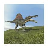 Spinosaurus Dinosaur Stampe