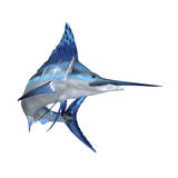 Blue Marlin Posters