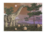 Argentinosaurus Dinosaur Eating Leaves from the Tree Tops Poster