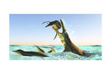Kronosaurus, Attacks a Pod of Dolichorhynchops in Cretaceous Seas Prints