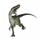 Monolophosaurus Dinosaur Prints