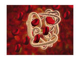 Conceptual Image of Hemoglobin and Red Blood Cells Prints