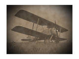 Vintage Image of a Biplane Parked on the Grass Prints
