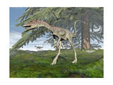 Compsognathus Dinosaur under Fir Tree Prints