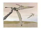 Two Pteranodons Flying over Small Islands Stampe