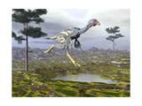 Caudipteryx Dinosaur Prints