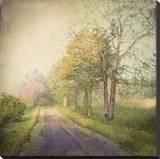 Sweet Road Stretched Canvas Print by Dawne Polis