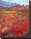 Desert Rainbow (center) Stretched Canvas Print by Erin Hanson