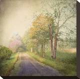 Sweet Road Stretched Canvas Print by Dawne Polis