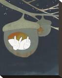 Acorn, Sweet Acorn Reproduction sur toile tendue par Kristiana Pärn