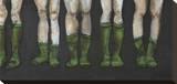 Green Socks Opspændt lærredstryk af Kara Smith