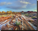 Rainbow Vista, Valley of Fire State Park, Nevada Stretched Canvas Print by Tim Fitzharris