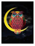 Ali Gulec - Owl Plakát