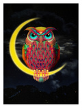 Owl Posters by Ali Gulec