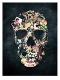 Vintage Skull Reprodukcje autor Ali Gulec