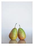 Fruit Prints by Lina Kremsdorf