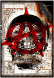 Anarchy Skull Posters